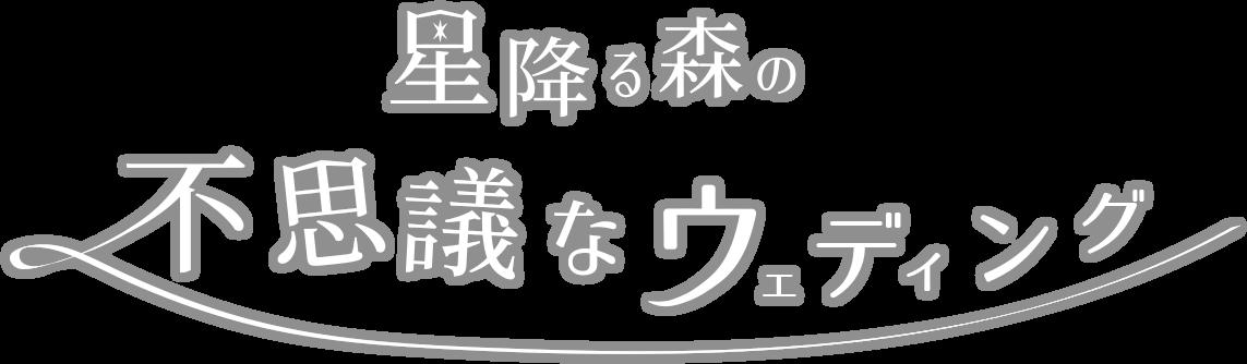 mysterious_wedding_logo1