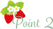 stea_point_2