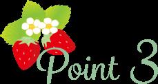 stea_point_3_2