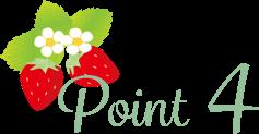 stea_point_4