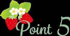 stea_point_5