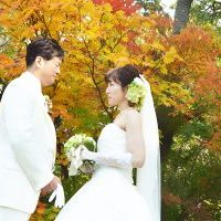 Wedding_Album (11)